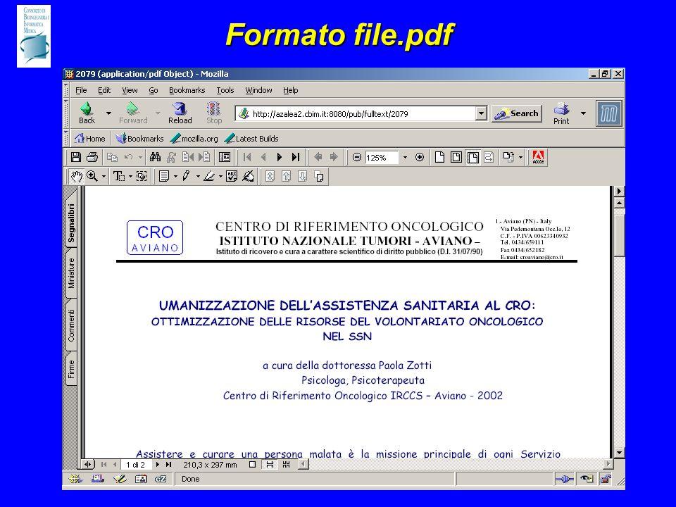 Formato file.pdf