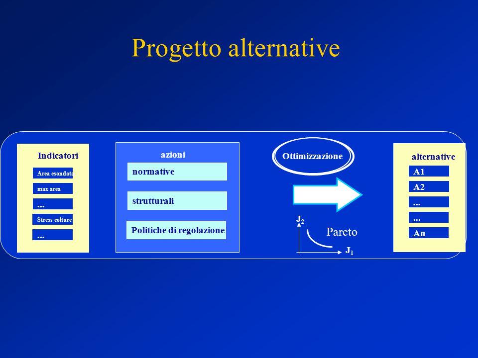 Progetto alternative strutturali normative azioni Indicatori Area esondata...