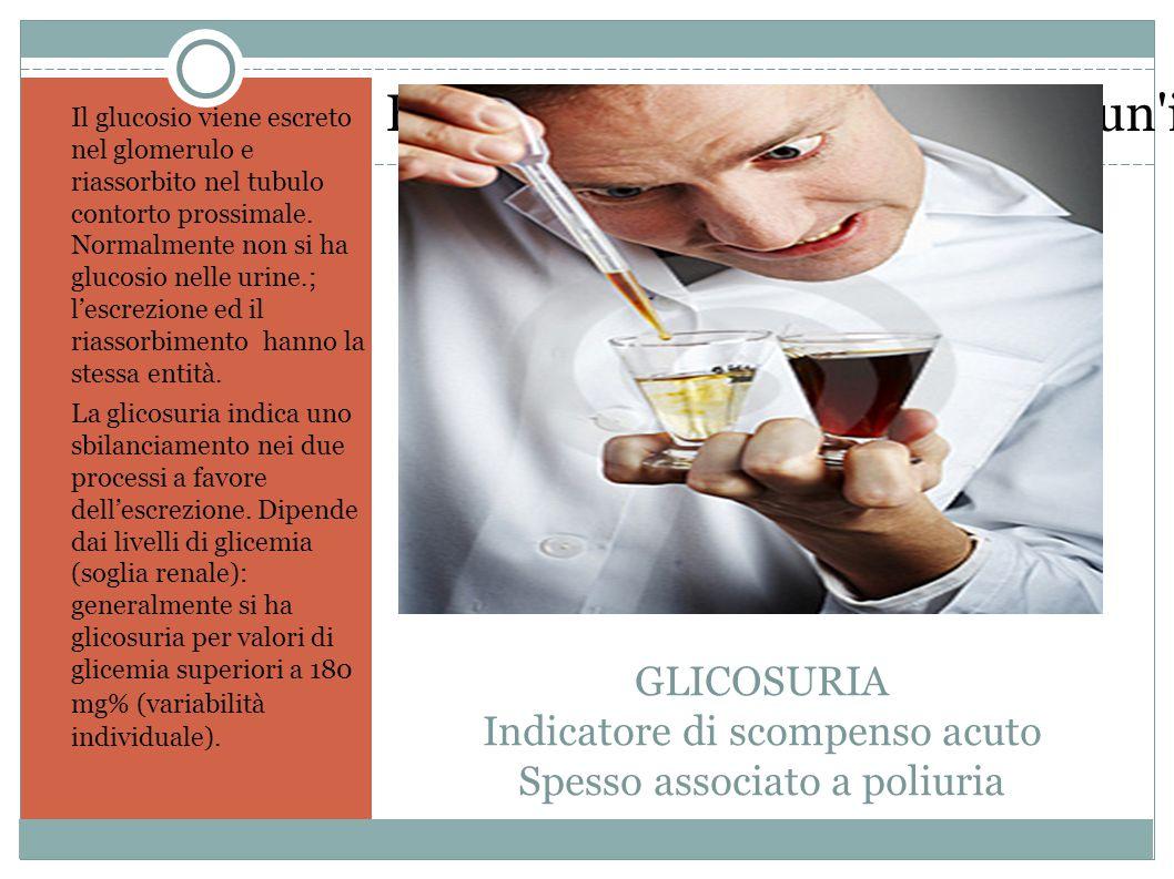 Fare clic sull icona per inserire un immagine GLICOSURIA Indicatore di scompenso acuto Spesso associato a poliuria Il glucosio viene escreto nel glomerulo e riassorbito nel tubulo contorto prossimale.