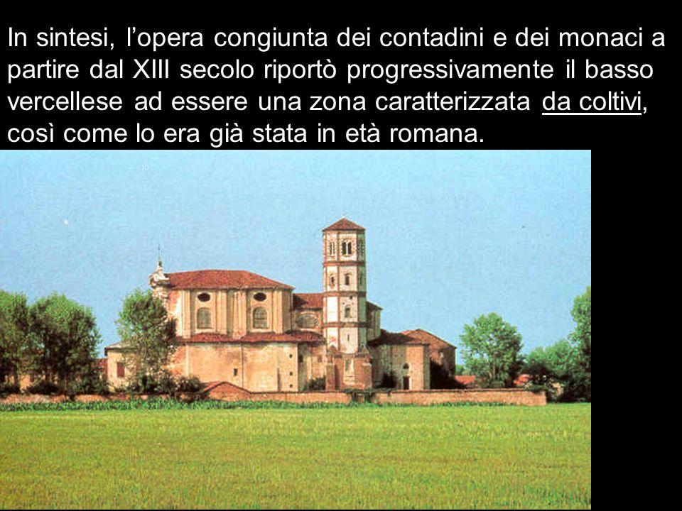 In sintesi, l'opera congiunta dei contadini e dei monaci a partire dal XIII secolo riportò progressivamente il basso vercellese ad essere una zona caratterizzata da coltivi, così come lo era già stata in età romana.