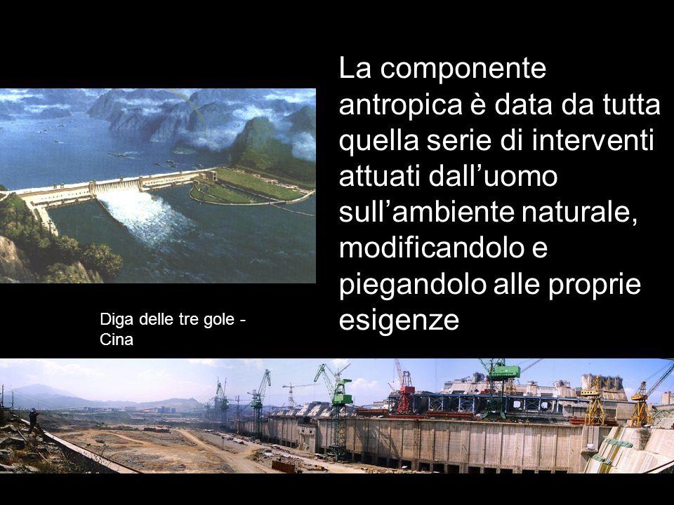 La componente antropica è data da tutta quella serie di interventi attuati dall'uomo sull'ambiente naturale, modificandolo e piegandolo alle proprie esigenze Diga delle tre gole - Cina