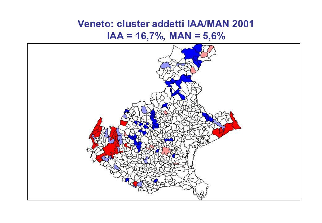 Veneto: cluster addetti IAA/MAN 2001 IAA = 16,7%, MAN = 5,6%