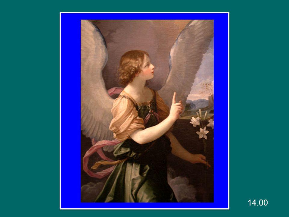 Un segno grandioso apparve nel cielo: una donna vestita di sole, con la luna sotto i suoi piedi e, sul capo, una corona di dodici stelle.