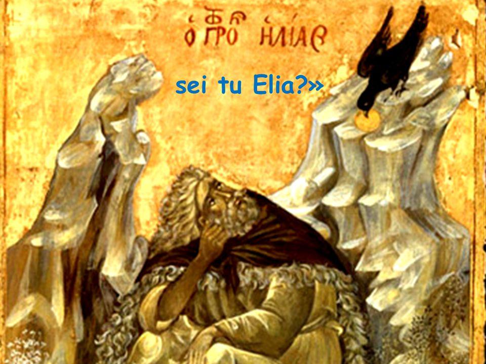 sei tu Elia?»