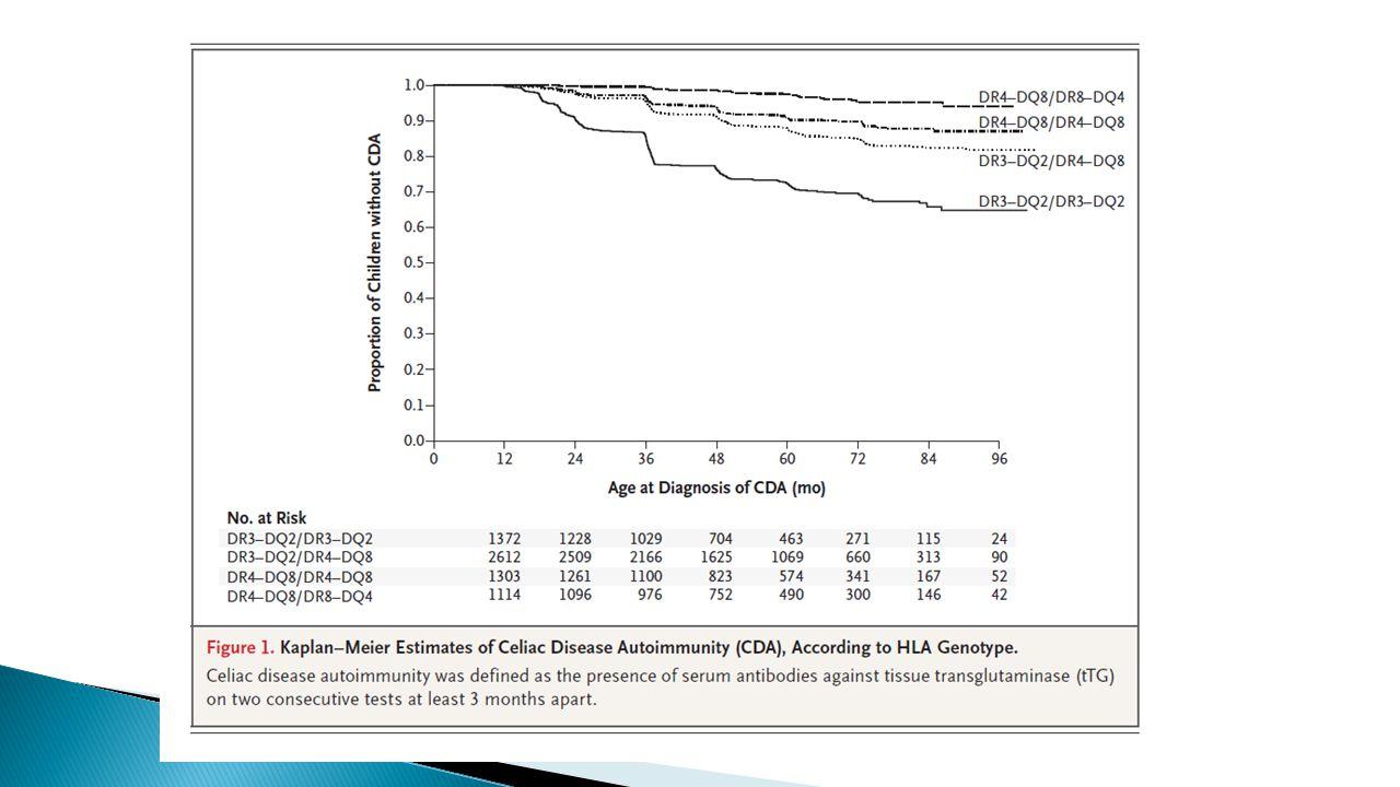 Studi osservazionali In bambini con meno di 2 anni di età, il rischio di sviluppare la celiachia era maggiore nel momento in cui la quantità di glutine introdotta era alta rispetto a quelli che ingerivano una quantità di glutine piccola o media (Ivarsson et al, Am J Clin Nutr 2002)