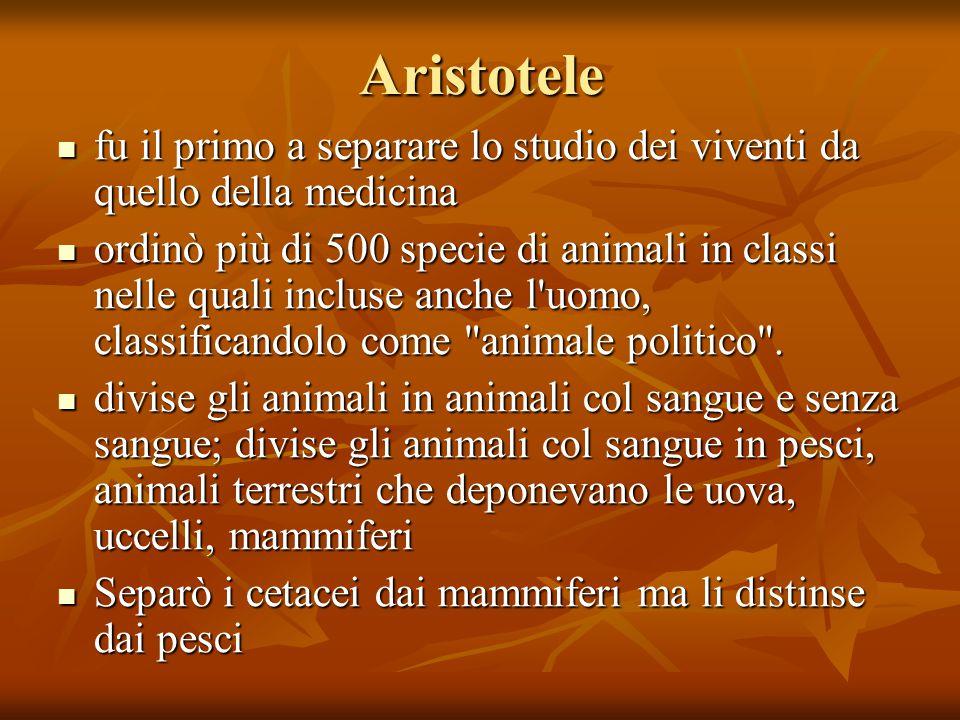 Aristotele fu il primo a separare lo studio dei viventi da quello della medicina ordinò più di 500 specie di animali in classi nelle quali incluse anche l uomo, classificandolo come animale politico .