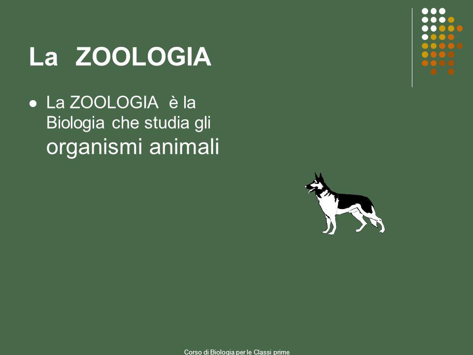 LaZOOLOGIA La ZOOLOGIA è la Biologia che studia gli organismi animali