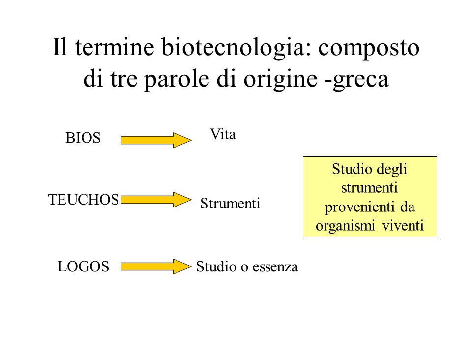 Il termine biotecnologia: composto di tre parole di origine -greca BIOS Vita TEUCHOS Strumenti LOGOSStudio o essenza Studio degli strumenti provenienti da organismi viventi