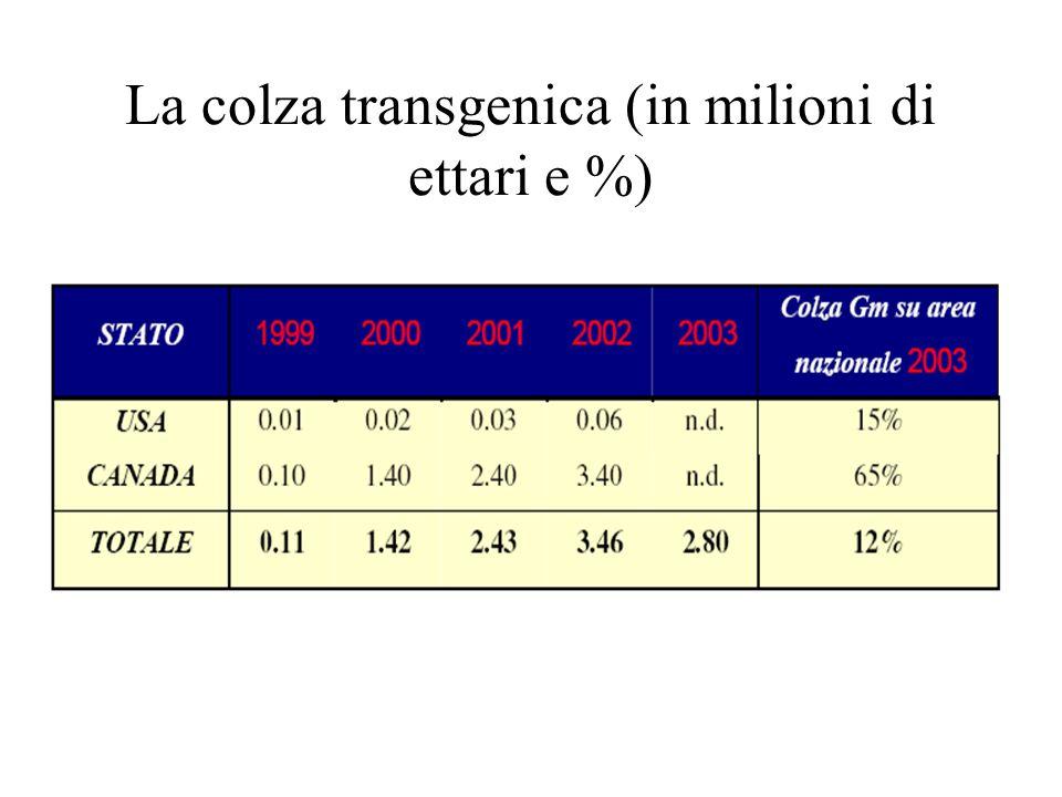 La colza transgenica (in milioni di ettari e %)