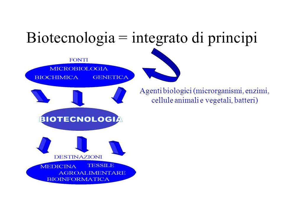 Biotecnologia = integrato di principi Agenti biologici (microrganismi, enzimi, cellule animali e vegetali, batteri)