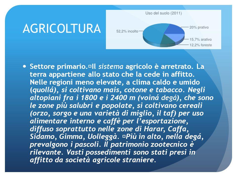 AGRICOLTURA Settore primario. Il sistema agricolo è arretrato. La terra appartiene allo stato che la cede in affitto. Nelle regioni meno elevate, a cl