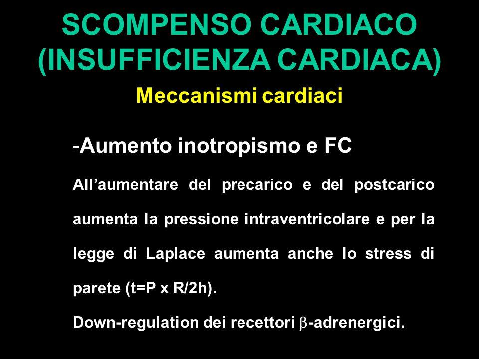 SCOMPENSO CARDIACO (INSUFFICIENZA CARDIACA) Meccanismi cardiaci -Aumento inotropismo e FC All'aumentare del precarico e del postcarico aumenta la pressione intraventricolare e per la legge di Laplace aumenta anche lo stress di parete (t=P x R/2h).