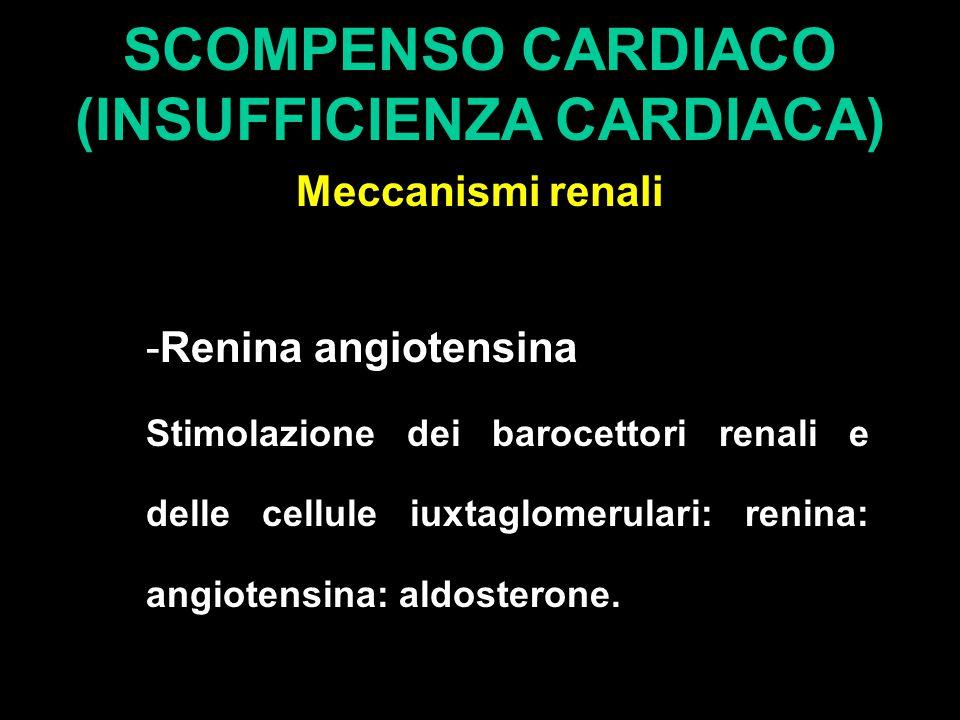 SCOMPENSO CARDIACO (INSUFFICIENZA CARDIACA) Meccanismi renali -Renina angiotensina Stimolazione dei barocettori renali e delle cellule iuxtaglomerulari: renina: angiotensina: aldosterone.