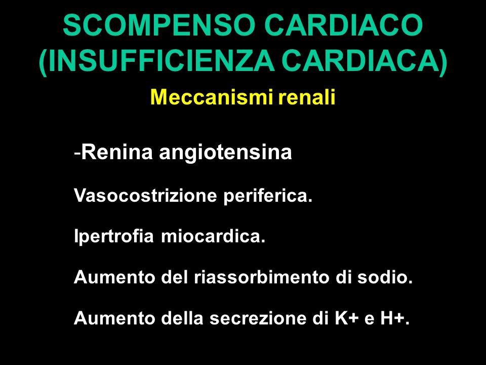 SCOMPENSO CARDIACO (INSUFFICIENZA CARDIACA) Meccanismi renali -Renina angiotensina Vasocostrizione periferica. Ipertrofia miocardica. Aumento del rias