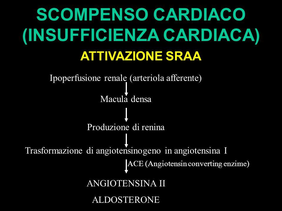 SCOMPENSO CARDIACO (INSUFFICIENZA CARDIACA) ATTIVAZIONE SRAA Ipoperfusione renale (arteriola afferente) Macula densa Produzione di renina Trasformazione di angiotensinogeno in angiotensina I ACE (Angiotensin converting enzime) ANGIOTENSINA II ALDOSTERONE