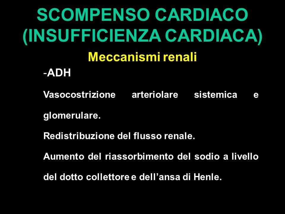 SCOMPENSO CARDIACO (INSUFFICIENZA CARDIACA) Meccanismi renali -ADH Vasocostrizione arteriolare sistemica e glomerulare. Redistribuzione del flusso ren