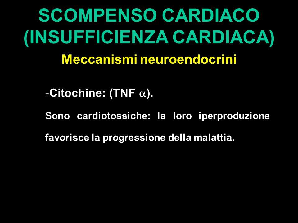 SCOMPENSO CARDIACO (INSUFFICIENZA CARDIACA) Meccanismi neuroendocrini -Citochine: (TNF  ). Sono cardiotossiche: la loro iperproduzione favorisce la p