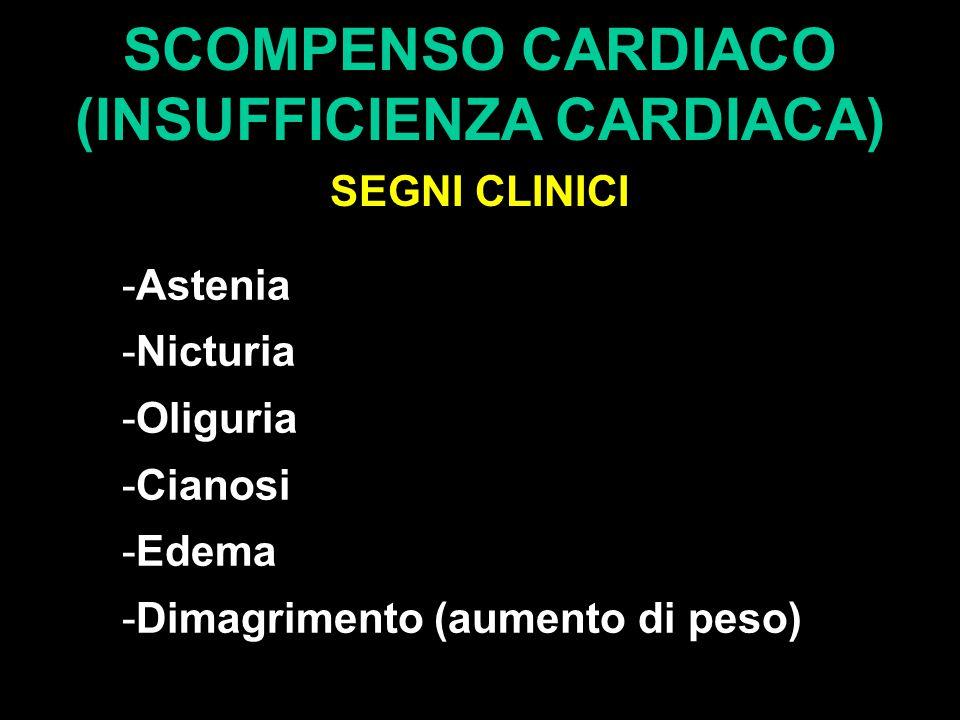 SCOMPENSO CARDIACO (INSUFFICIENZA CARDIACA) SEGNI CLINICI -Astenia -Nicturia -Oliguria -Cianosi -Edema -Dimagrimento (aumento di peso)