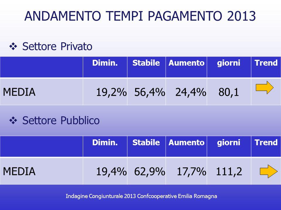 Indagine Congiunturale 2013 Confcooperative Emilia Romagna ANDAMENTO TEMPI PAGAMENTO 2013  Settore Privato Dimin.StabileAumentogiorniTrend MEDIA 19,2%56,4%24,4%80,1 Dimin.StabileAumentogiorniTrend MEDIA 19,4%62,9%17,7%111,2  Settore Pubblico