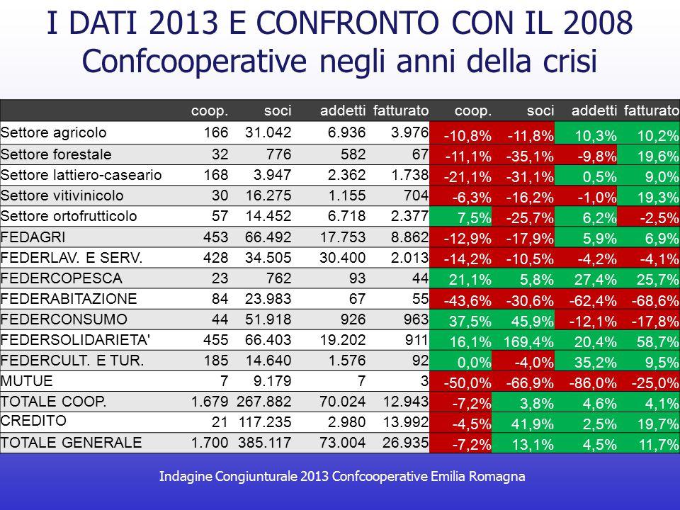 Indagine Congiunturale 2013 Confcooperative Emilia Romagna 75,6% Percentuale di contratti a tempo indeterminato L'OCCUPAZIONE IN CONFCOOPERATIVE 61,4% Percentuale di occupati di genere femminile 16,0% Percentuale di occupati extracomunitari