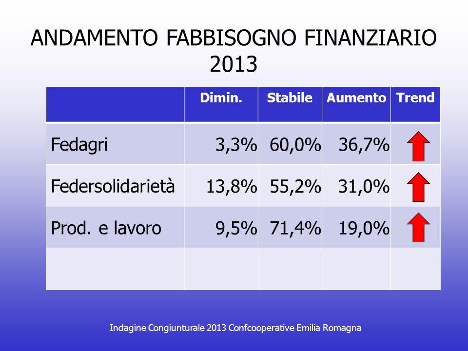 Indagine Congiunturale 2013 Confcooperative Emilia Romagna ANDAMENTO FABBISOGNO FINANZIARIO 2013 Dimin.StabileAumentoTrend Fedagri 3,3%60,0%36,7% Fede