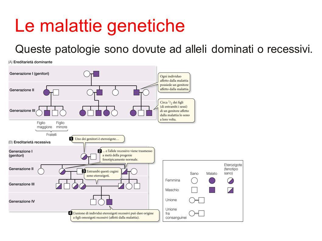 Le malattie genetiche Queste patologie sono dovute ad alleli dominati o recessivi.
