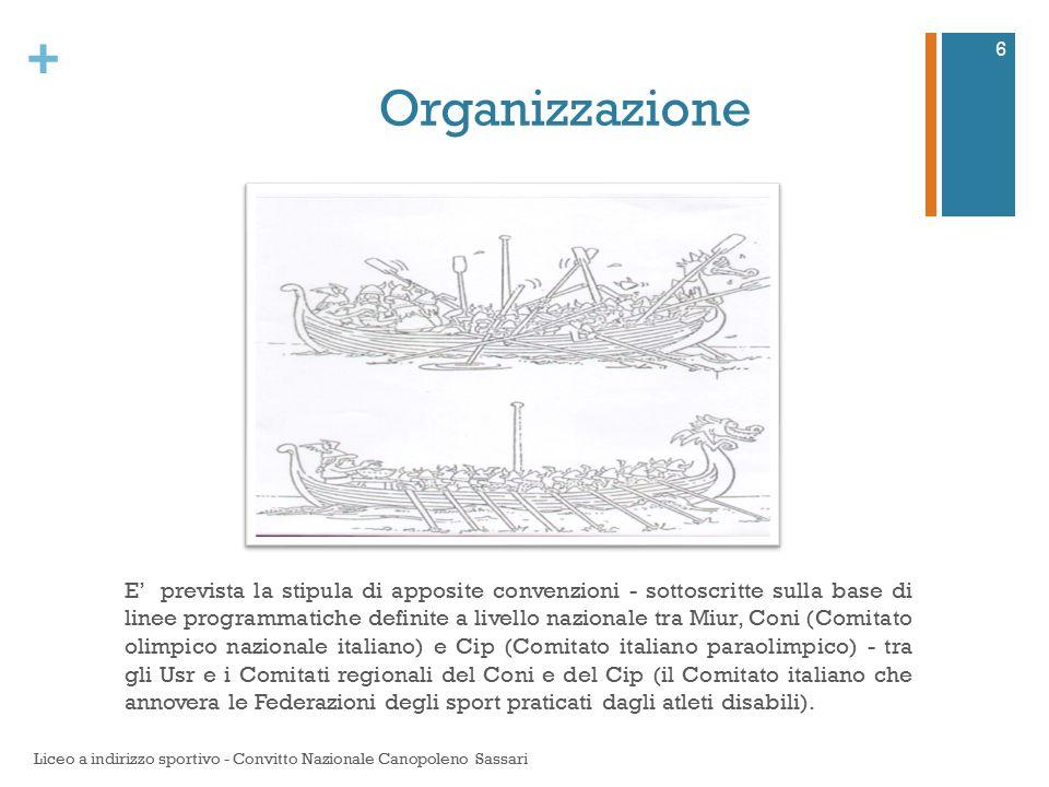 + Organizzazione E' prevista la stipula di apposite convenzioni - sottoscritte sulla base di linee programmatiche definite a livello nazionale tra Miu