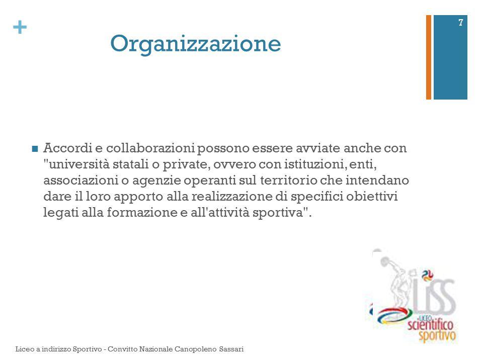 + Organizzazione Accordi e collaborazioni possono essere avviate anche con