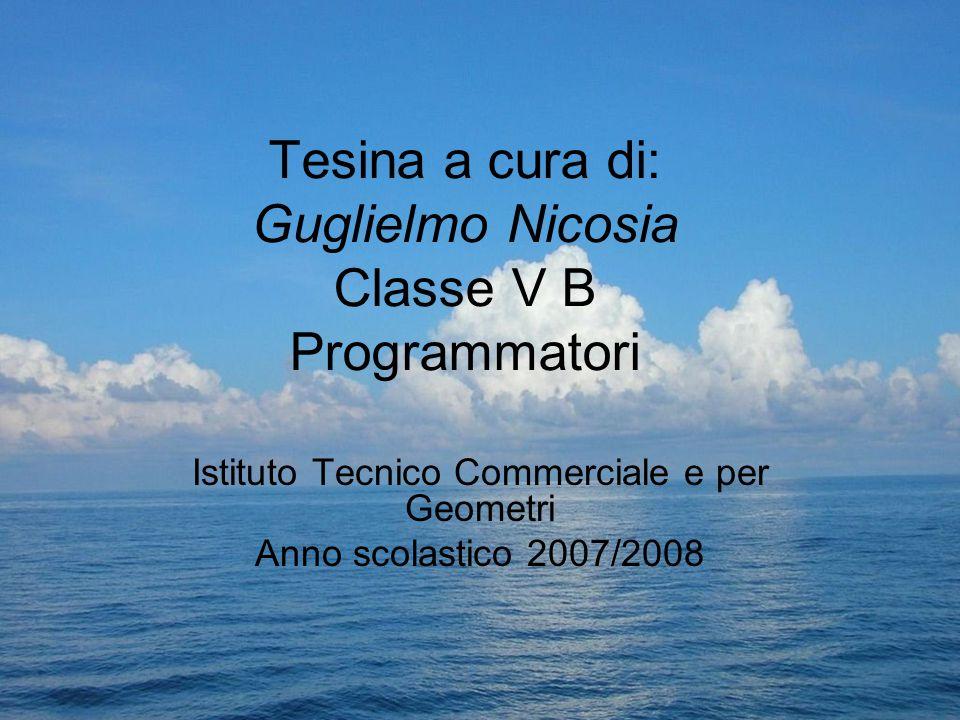 Tesina a cura di: Guglielmo Nicosia Classe V B Programmatori Istituto Tecnico Commerciale e per Geometri Anno scolastico 2007/2008