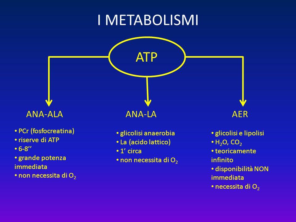 I METABOLISMI ATP ANA-ALAAERANA-LA PCr (fosfocreatina) riserve di ATP 6-8'' grande potenza immediata non necessita di O 2 glicolisi anaerobia La (acid