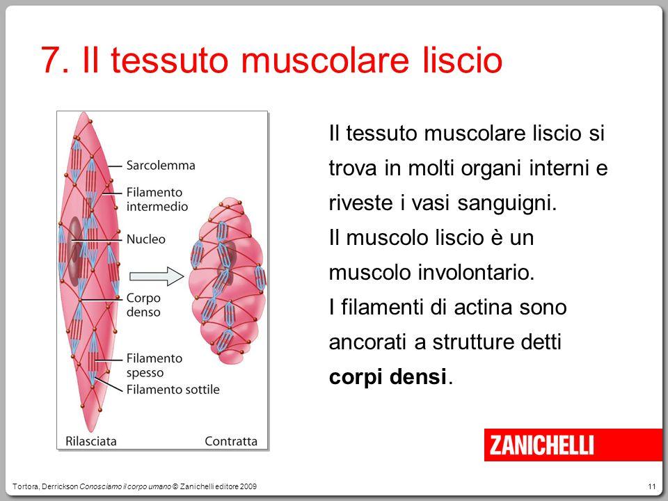 11 7. Il tessuto muscolare liscio Il tessuto muscolare liscio si trova in molti organi interni e riveste i vasi sanguigni. Il muscolo liscio è un musc