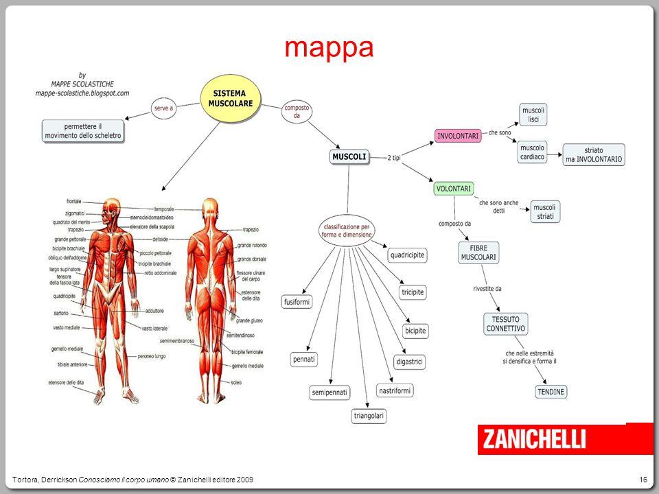 16 mappa Tortora, Derrickson Conosciamo il corpo umano © Zanichelli editore 2009