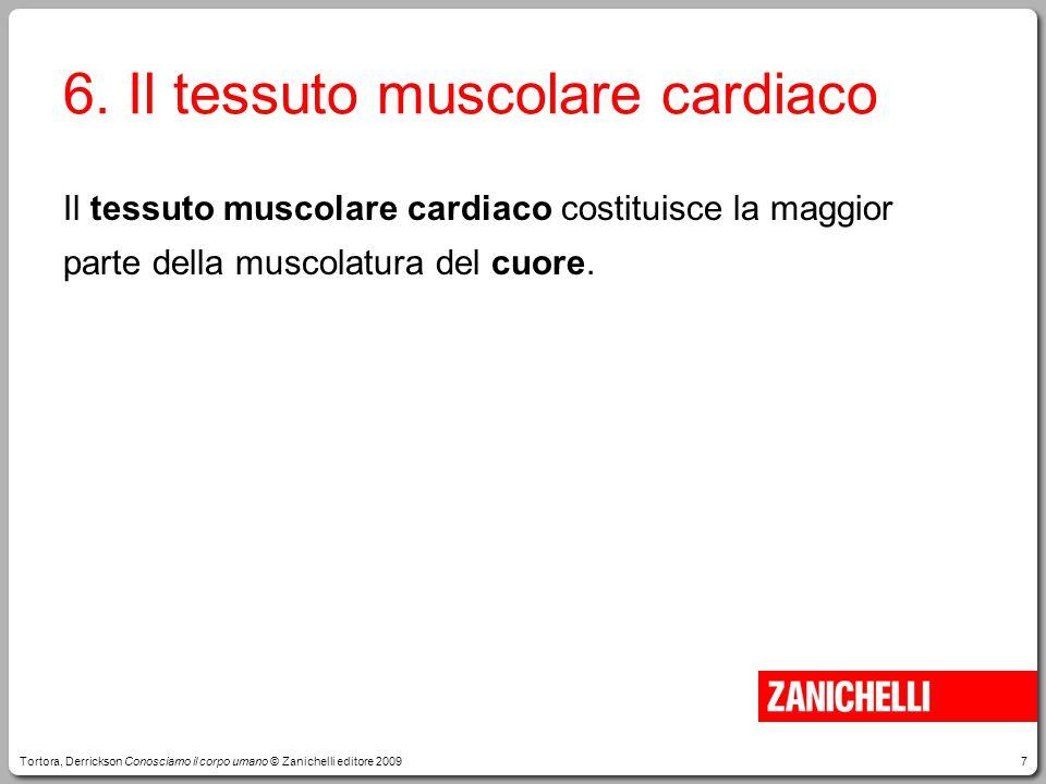 7 6. Il tessuto muscolare cardiaco Tortora, Derrickson Conosciamo il corpo umano © Zanichelli editore 2009 Il tessuto muscolare cardiaco costituisce l
