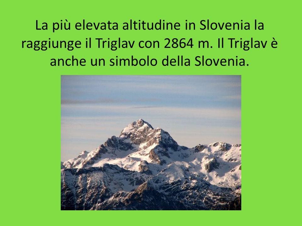 La più elevata altitudine in Slovenia la raggiunge il Triglav con 2864 m. Il Triglav è anche un simbolo della Slovenia.