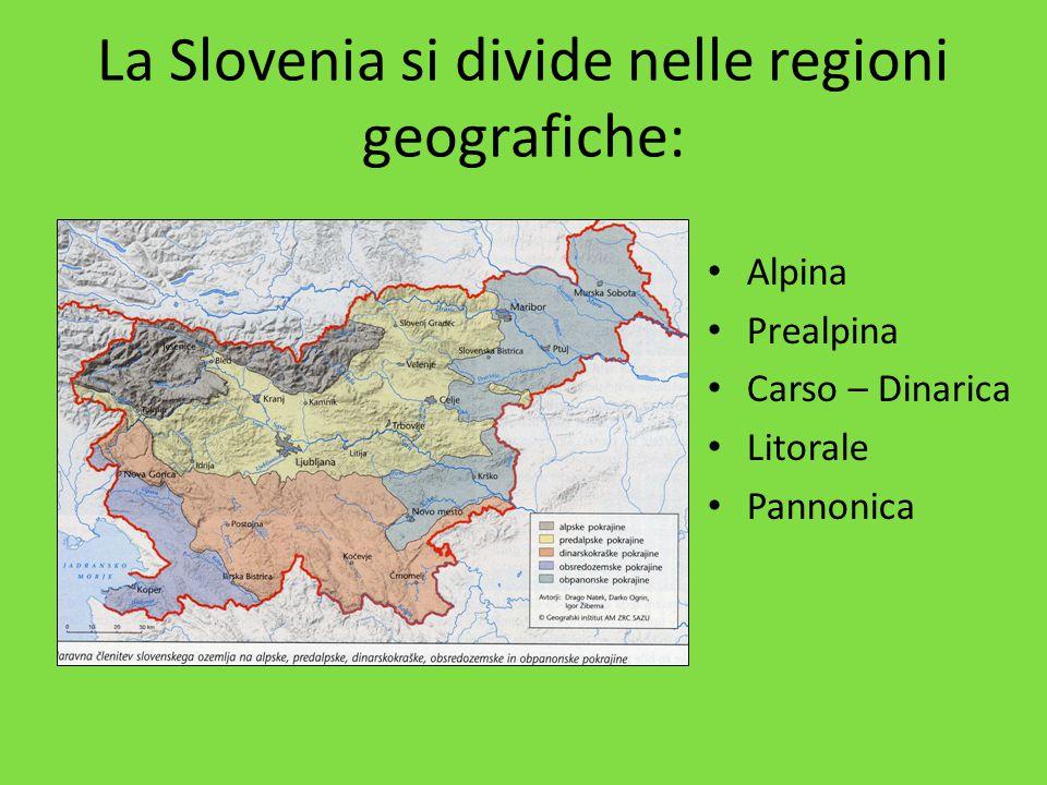 La Slovenia si divide nelle regioni geografiche: Alpina Prealpina Carso – Dinarica Litorale Pannonica