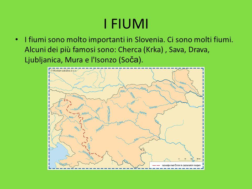 I FIUMI I fiumi sono molto importanti in Slovenia. Ci sono molti fiumi. Alcuni dei più famosi sono: Cherca (Krka), Sava, Drava, Ljubljanica, Mura e l'
