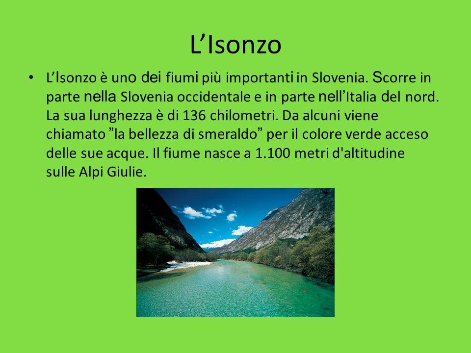 L'Isonzo L' I sonzo è un o dei fium i più important i in Slovenia. S corre in parte nella Slovenia occidentale e in parte nell' Italia d el nord. La s
