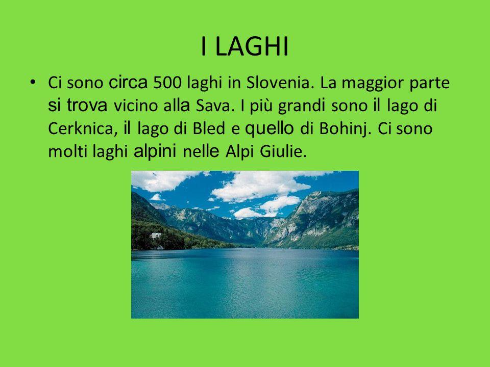 I LAGHI Ci sono circa 500 laghi in Slovenia. La maggior parte si trova vicino al la Sava. I più grand i sono il lago di Cerknica, il lago di Bled e qu