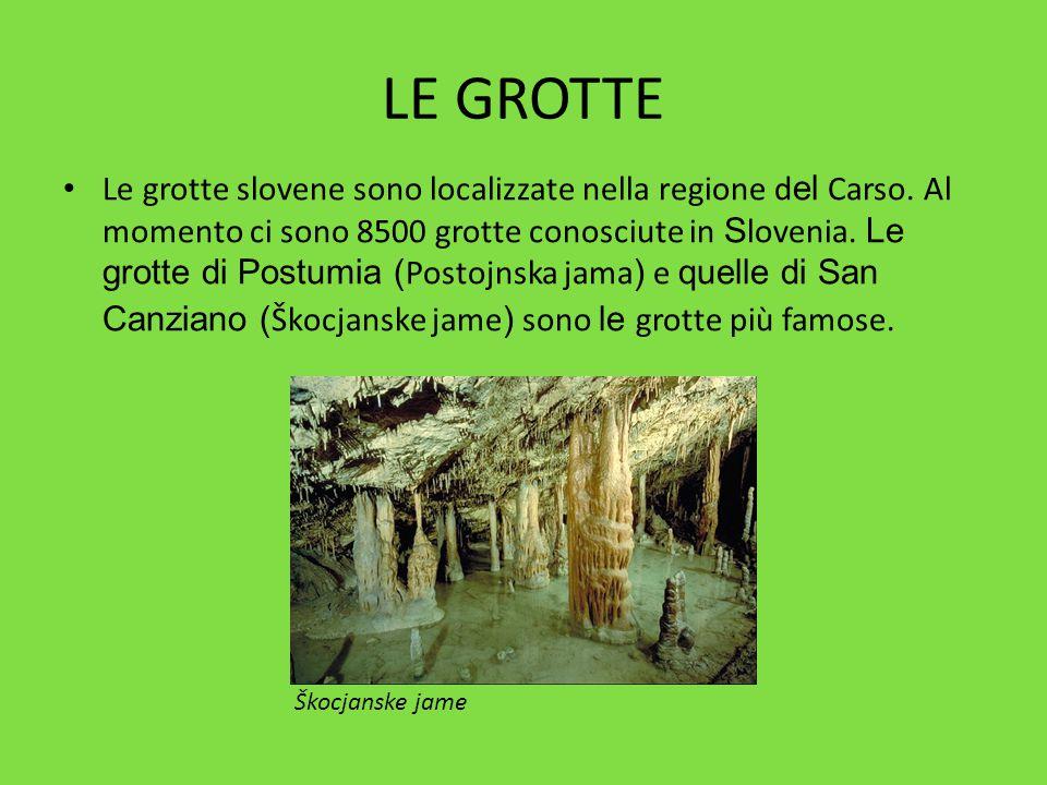 LE GROTTE Le grotte slovene sono localizzate nella regione d el Carso. Al momento ci sono 8500 grotte conosciute in S lovenia. Le grotte di Postumia (