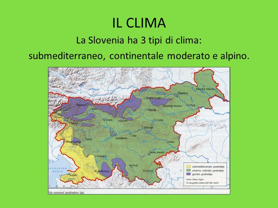 IL CLIMA La Slovenia ha 3 tipi di clima: submediterraneo, continentale moderato e alpino.