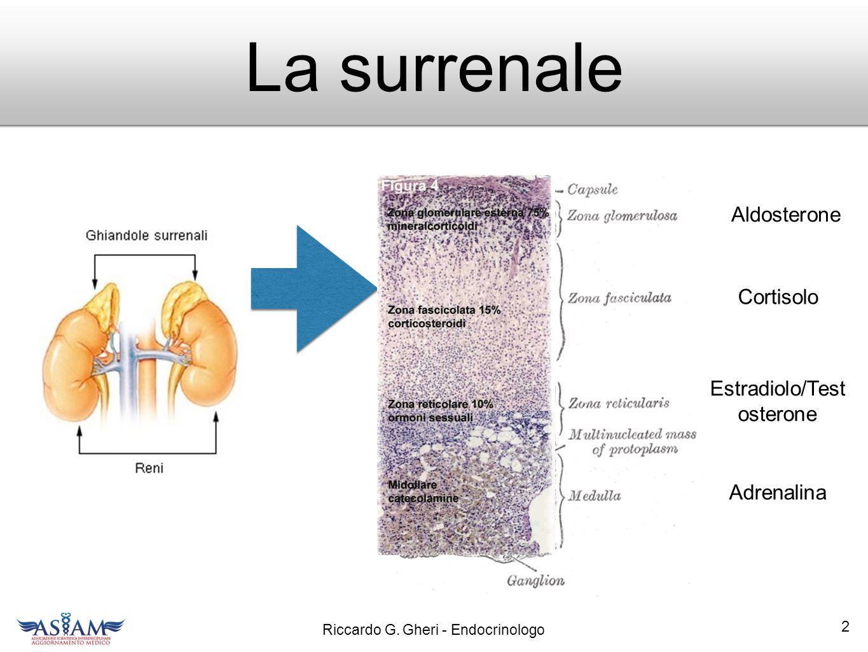 Riccardo G. Gheri - Endocrinologo EndOsMet 33... fra poco a Firenze