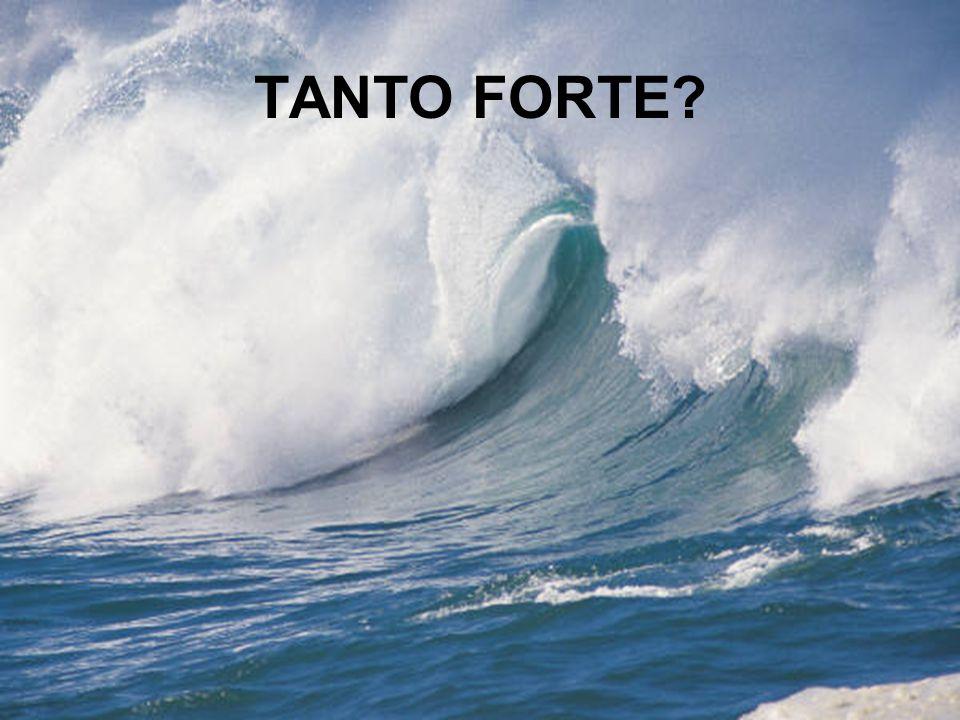 TANTO FORTE?