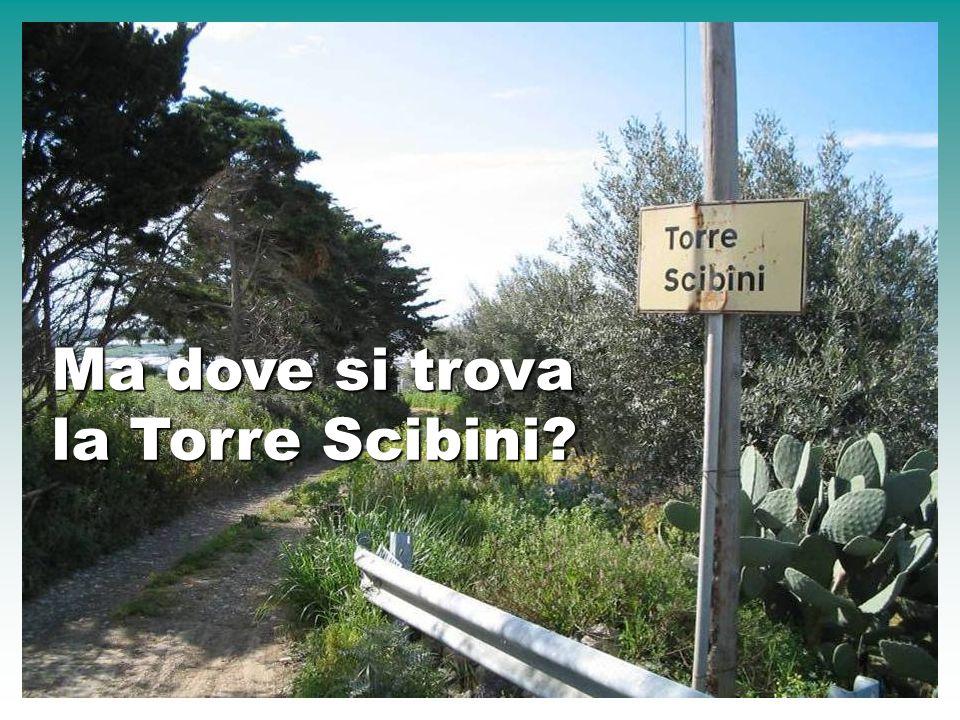 Ma dove si trova la Torre Scibini?