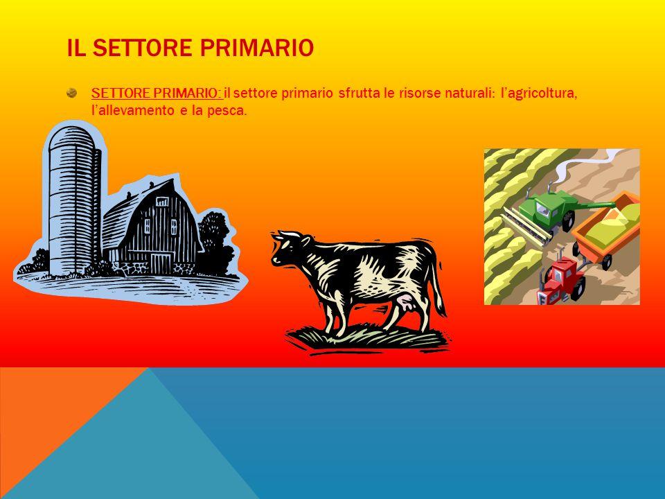 IL SETTORE PRIMARIO SETTORE PRIMARIO: il settore primario sfrutta le risorse naturali: l'agricoltura, l'allevamento e la pesca.