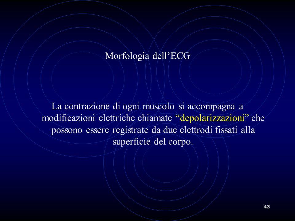 """43 Morfologia dell'ECG La contrazione di ogni muscolo si accompagna a modificazioni elettriche chiamate """"depolarizzazioni"""" che possono essere registra"""