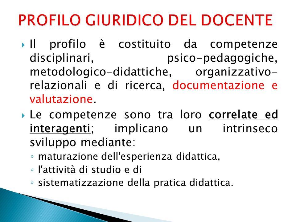  Il profilo è costituito da competenze disciplinari, psico-pedagogiche, metodologico-didattiche, organizzativo- relazionali e di ricerca, documentazione e valutazione.