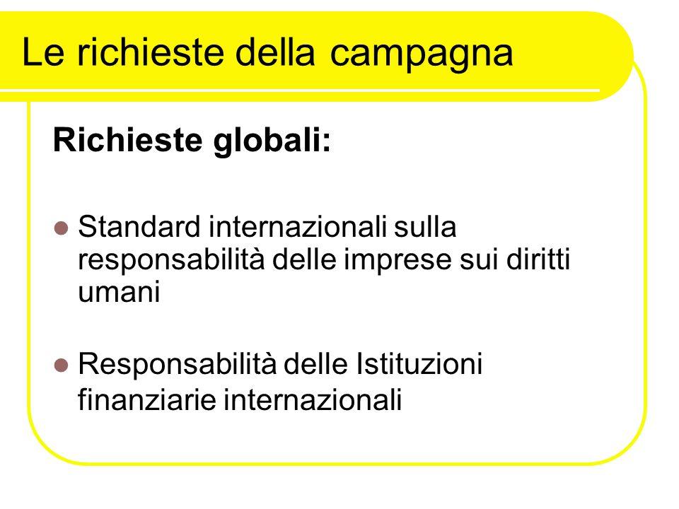 Le richieste della campagna Richieste globali: Standard internazionali sulla responsabilità delle imprese sui diritti umani Responsabilità delle Istituzioni finanziarie internazionali