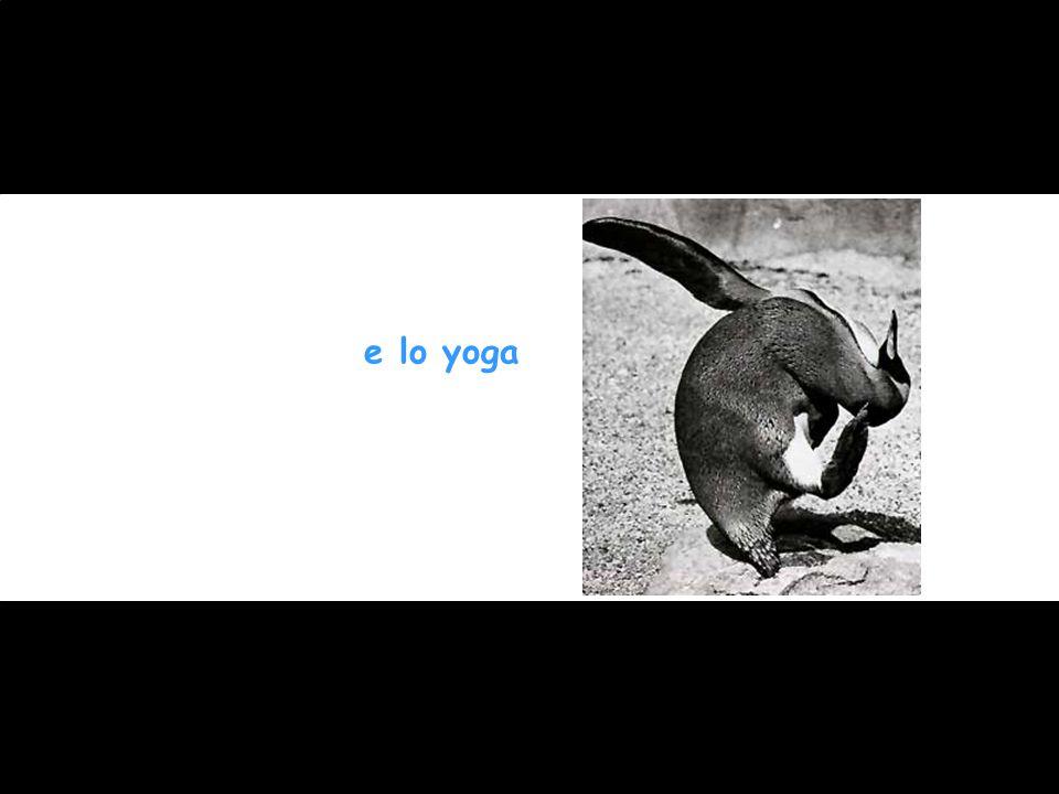 e lo yoga