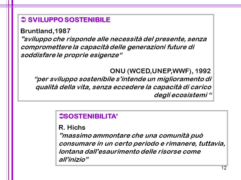 12  SVILUPPO SOSTENIBILE Bruntland,1987
