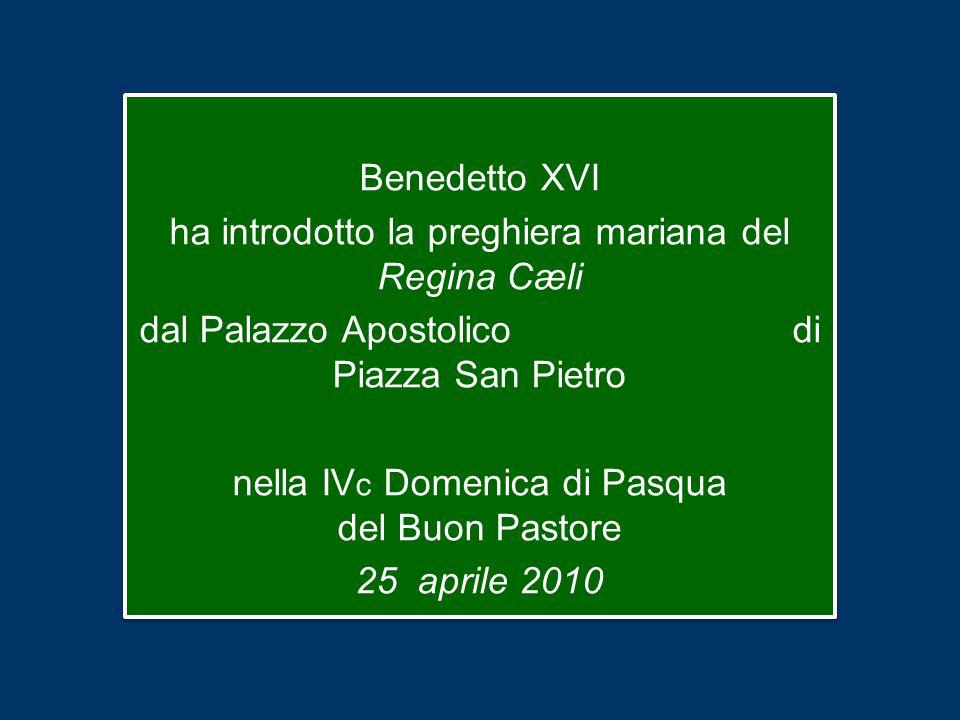 Benedetto XVI ha introdotto la preghiera mariana del Regina Cæli dal Palazzo Apostolico di Piazza San Pietro nella IV c Domenica di Pasqua del Buon Pastore 25 aprile 2010 Benedetto XVI ha introdotto la preghiera mariana del Regina Cæli dal Palazzo Apostolico di Piazza San Pietro nella IV c Domenica di Pasqua del Buon Pastore 25 aprile 2010